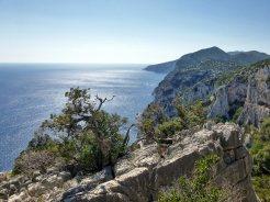 Sardegna fra curve, sterrati e pecore