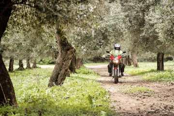 Alla scoperta della Sardegna con il Raid degli Oliveti