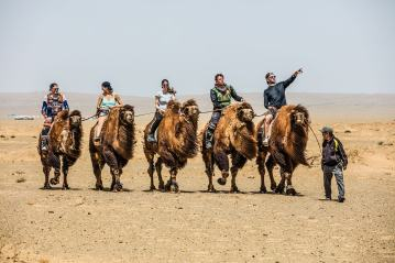 gobi-desert-rally-cammelli