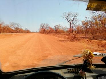 in-ape-in-africa-strade-senegal