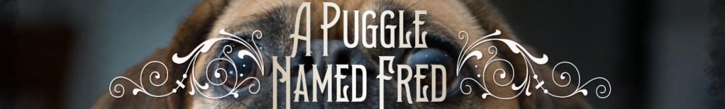 A Puggle Named Fred