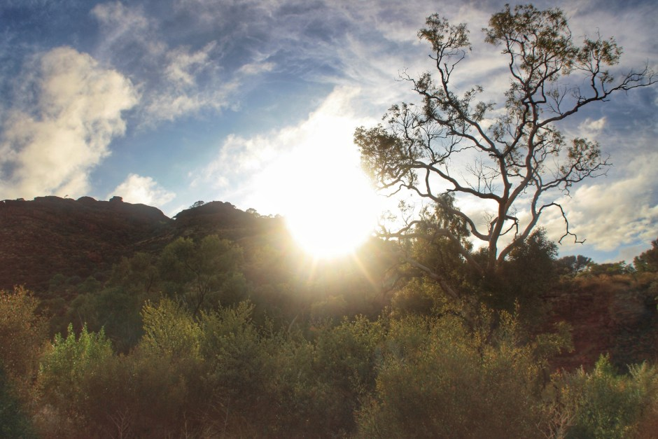 Incredible sunrise reaching the top of Kings Canyon