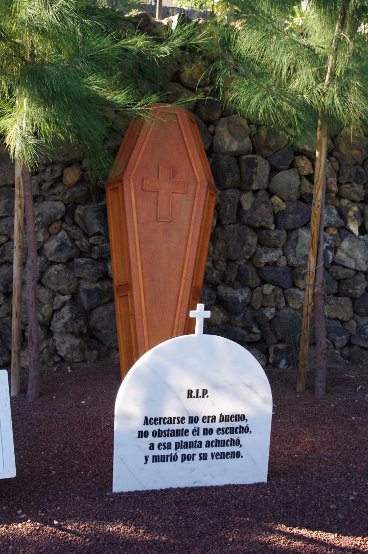 Guimar-Museum-Tenerife-34