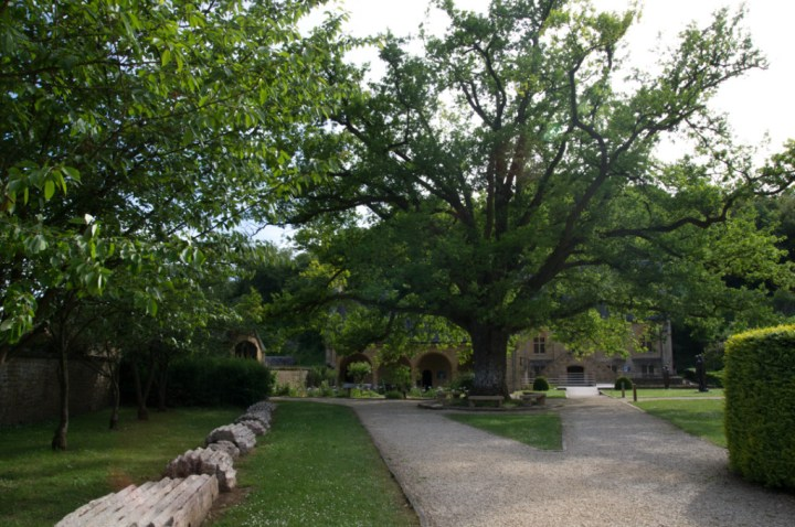 ORVAL - Belgium - view of the entrance and tree