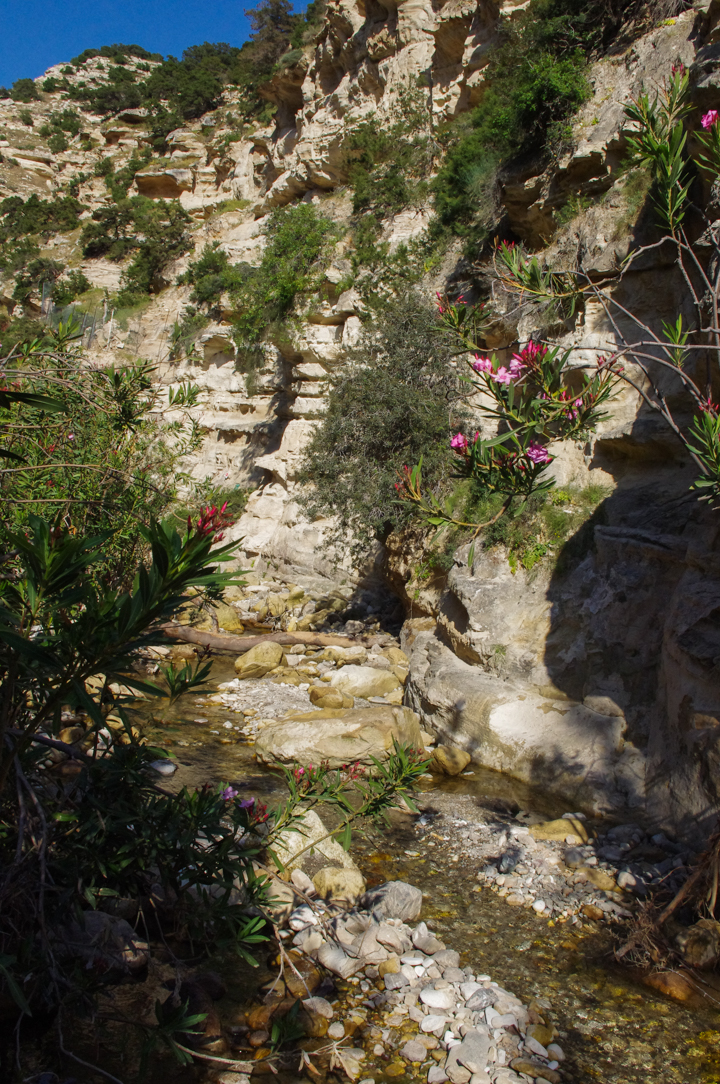 The Avakas Gorge - Cyprus - the beginning of the gorge