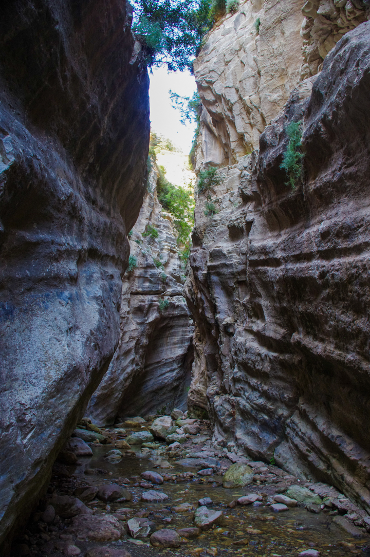 The Avakas Gorge - Cyprus - the gorge