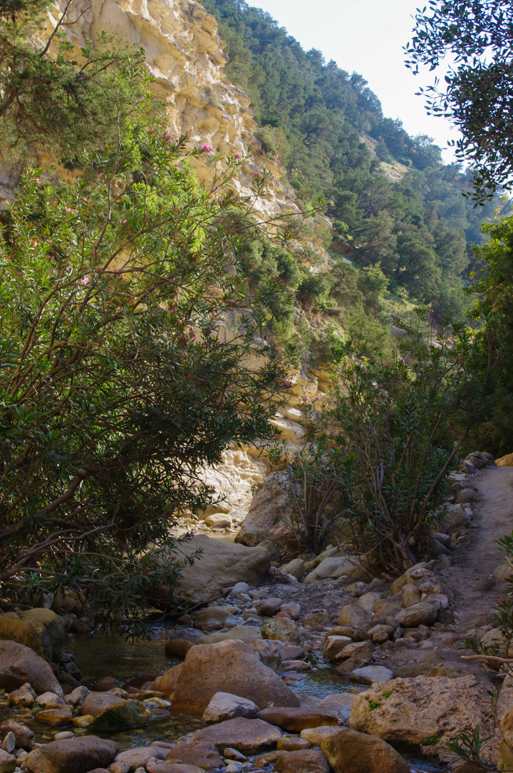 The Avakas Gorge - Cyprus - the river