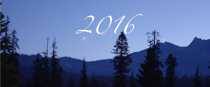 2016: Goals setting
