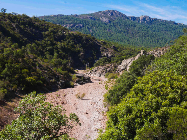 An empty river bed in the Esterel, France - Learn more on roadtripsaroundtheworld.com