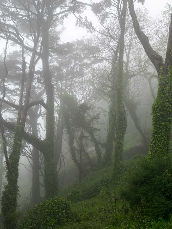 A foggy day at Pena Palace - Sintra, Portugal - Learn more on roadtripsaroundtheworld.com