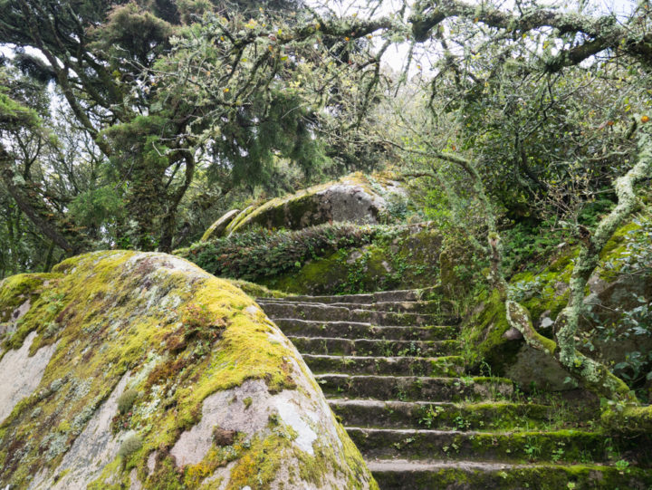 Beautiful stairs at the Castle of the Moors Castle in Sintra, Portugal - Learn more on roadtripsaroundtheworld.com