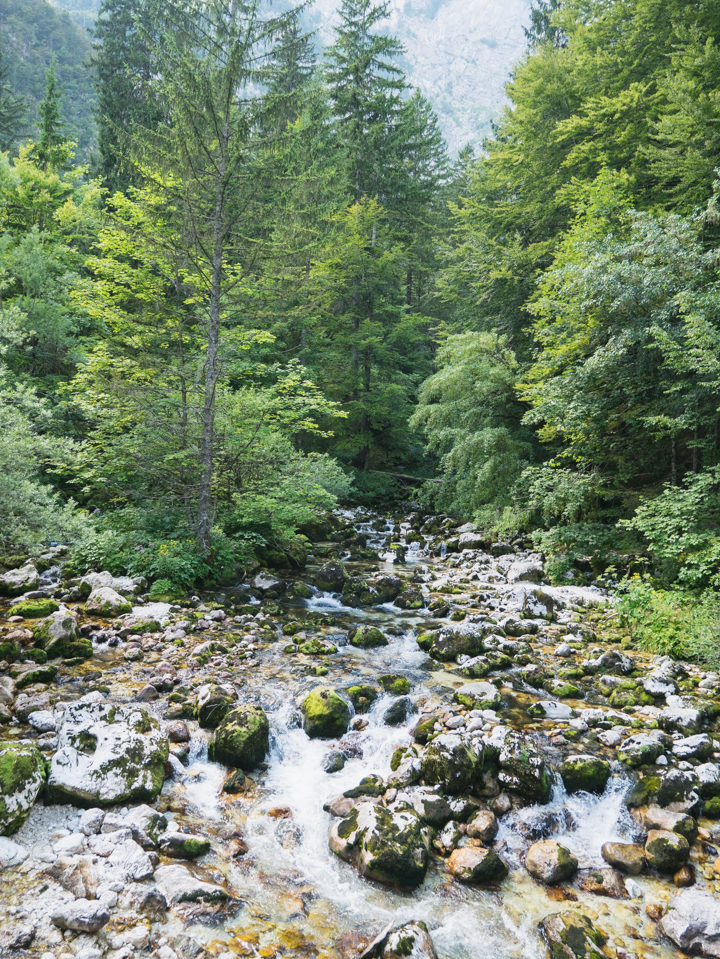 The Savica river near lake Bohinj, Slovenia - learn more on RoadTripsaroundtheWorld.com