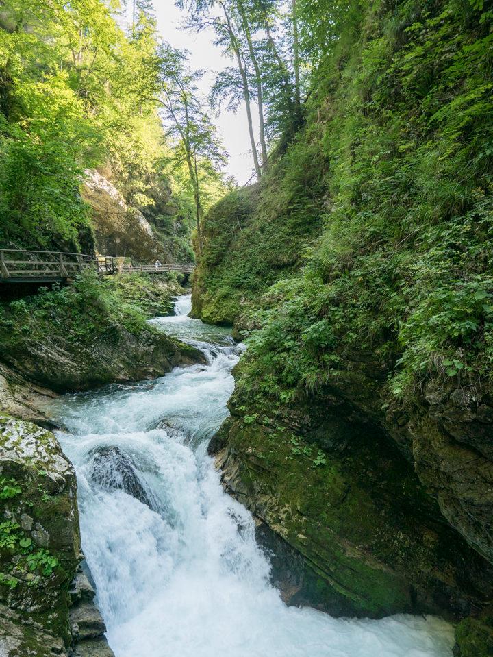 The Raddovna river rushing through the Vintgar Gorge in Slovenia - Learn more on www.RoadTripsaroundtheWorld.com