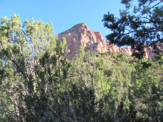 La Verkin Creek Trail in Kolob Canyon: Beautiful Kolob Canyons in the Early Morning