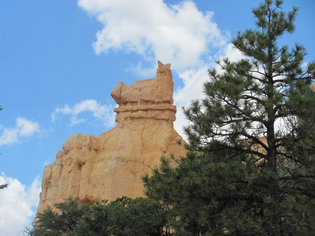 Views From the Fairyland Loop Trail in Bryce Canyon National Park- Doesn't it look like a cat?