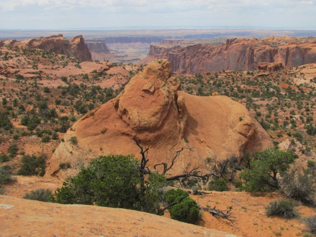 Views From the Top of Whale Rock- Canyonlands National Park
