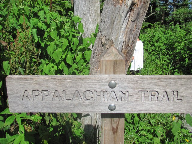 Hiking From Clingmans Dome to Double Spring Gap Shelter
