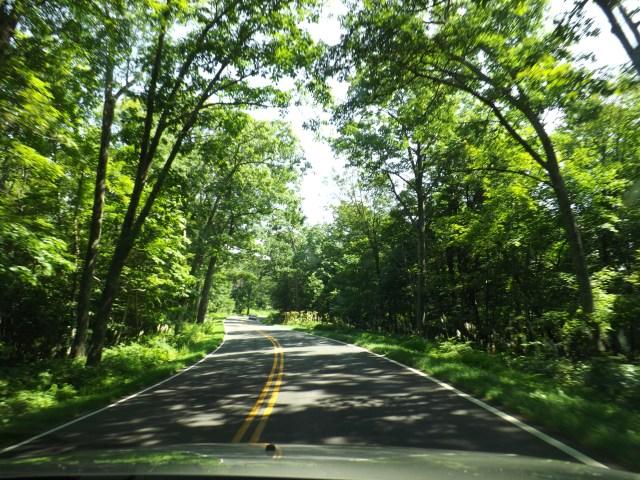 Shenandoah National Park: Skyline Drive in Shenandoah