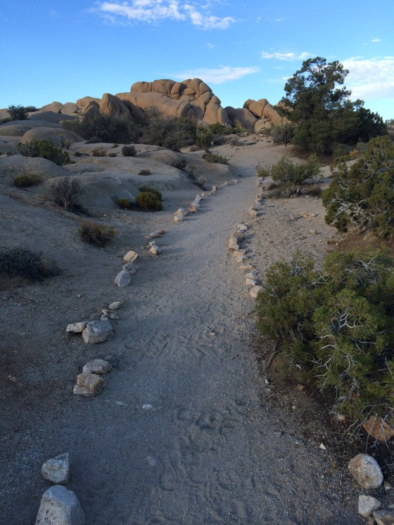 Best day hikes Joshua Tree National Park: Skull Rock Trail