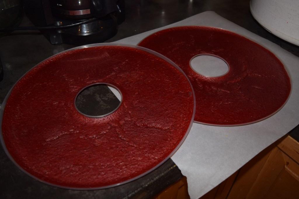 Homemade Fruit Leather Strawberry Kiwi