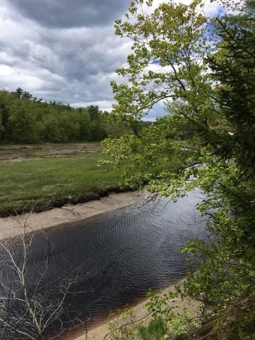 Rachel Carson National Wildlife Refuge