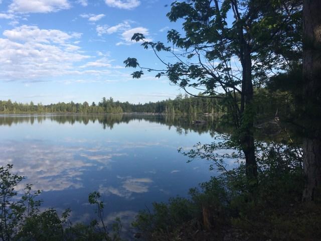 100 Mile Wilderness