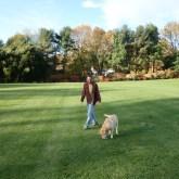 Walking around the property
