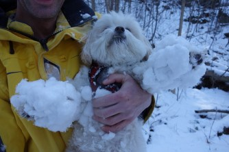 Mickey turning into a snowball