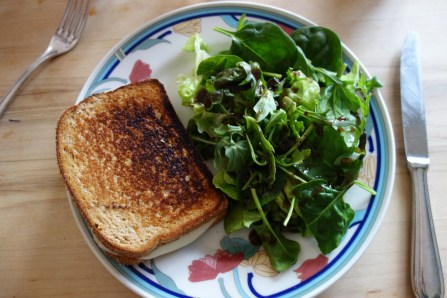 Half unhealthy lunch: grilled cheese sandwich with a green salad