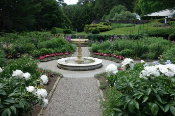 Part of the garden near the mansion
