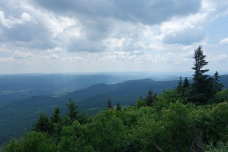 Along the way up Mt. Greylock