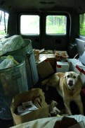 Jenny joins us on the garbage run - she likes to come everywhere