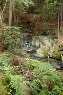 Little falls are part of Parker Brook