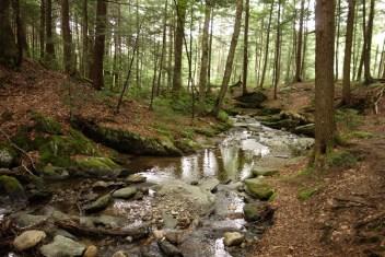 Parker Brook