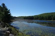 Peaceful lake #3
