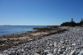 A natural seawall connects two points along our drive