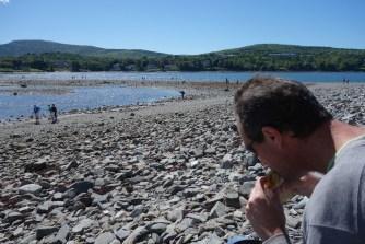Lunch on Bar Island