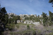 Eagle Falls Trail scenery
