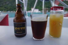 A Belgian beer (brewed by my cousin's husband) for Mark and rum and juice for me