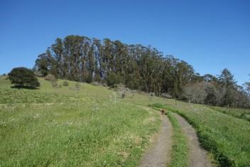 Over farm land