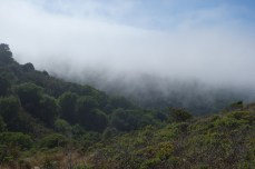 Foggy in the hills