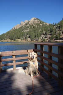 Oscar at Lily Lake