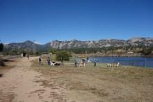 Estes Park dog park