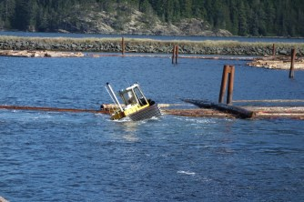 The logs are sorted and organized with this tiny boat