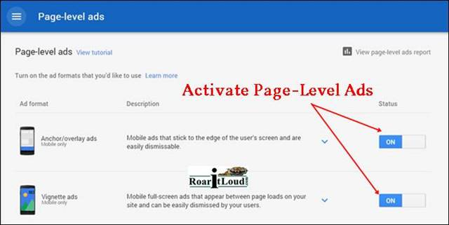 Activate page level ads Anchor overlay ads vignette ads