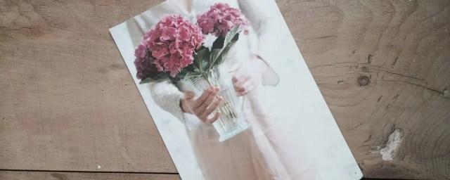 di fiori e regali