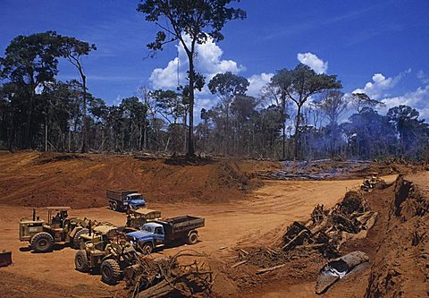 Of rainforest at mining camp in amazon part of brazil, trucks and caterpillars in front of cleared rainforest and burning trees and logs ,rondonia, brazil