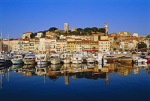 The Port, the Quay St. Pierre and the Suquet, Cannes, Alpes Maritime, France