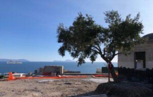 Cantiere Monte Echia