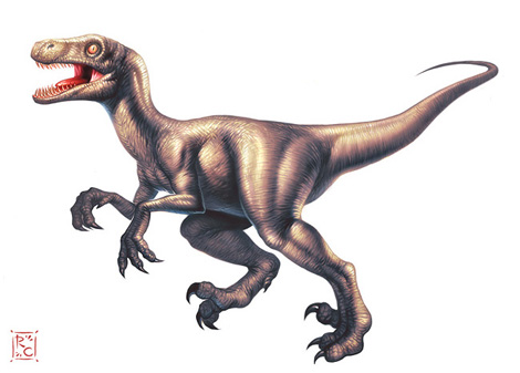 gd_beckermayer_velociraptor